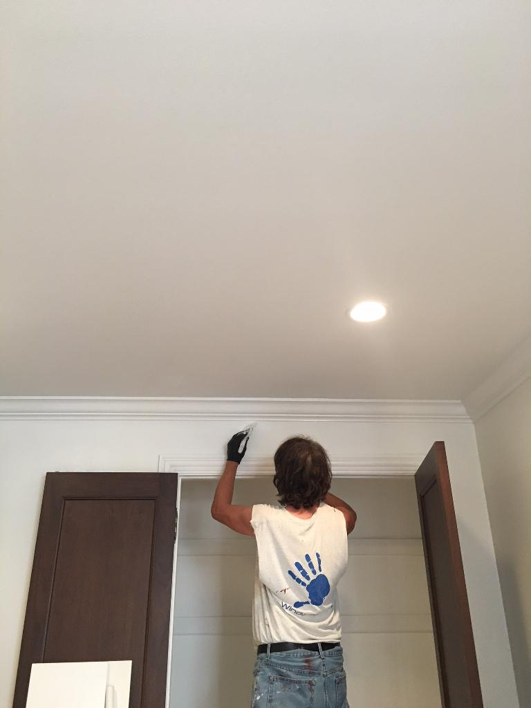 2017.11.03_Lincoln_Park_house - Painter_Chicago-_-Lincoln-Park.-House-painting.-Windy-Painters-Chicago-4_1024_768.jpg